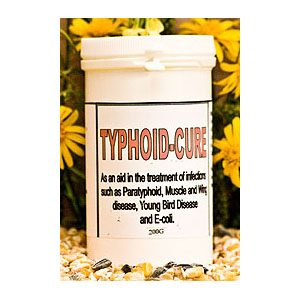 Typhoid-Cure